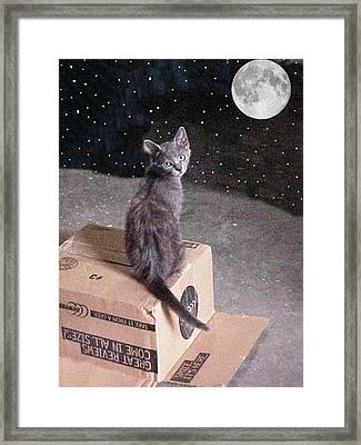I Saved You A Seat...it's A Beautiful Night Framed Print by Robert Stagemyer
