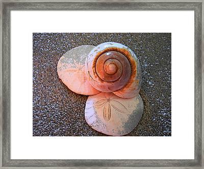 I Sea Art Framed Print by Micki Findlay