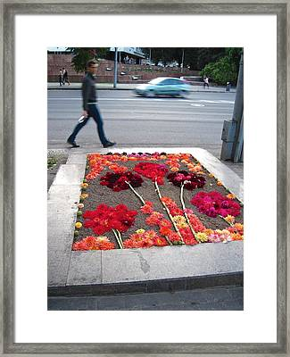 I See Flowers For You Everywhere Framed Print by Mary Lee Dereske