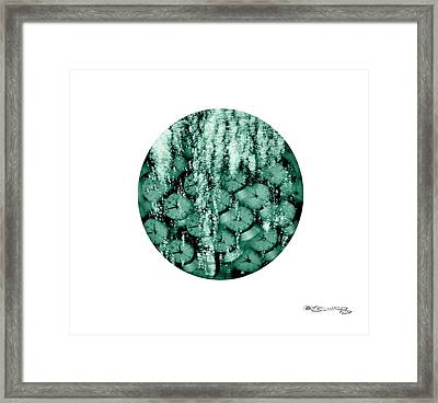I See Them Run Framed Print