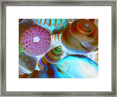 Framed Print featuring the photograph I Sell Seashells Down By The Seashore by Janice Westerberg
