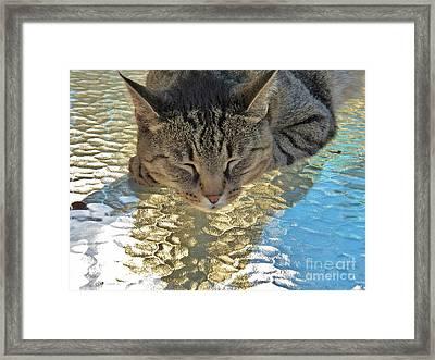 I Sleep On Water Framed Print by Judy Via-Wolff