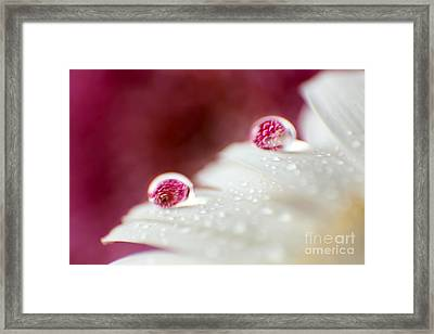 I Stand By You Framed Print