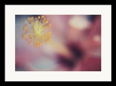 Hibiscus Digital Art Framed Prints