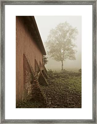I Think A Tree Framed Print