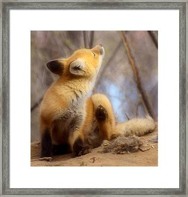 I Think I Got It Framed Print by Thomas Young