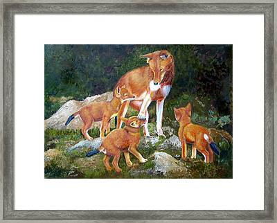 I Told You No Framed Print by Ruth Seal