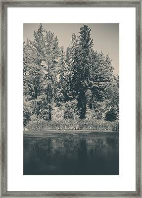 I Try Framed Print by Laurie Search