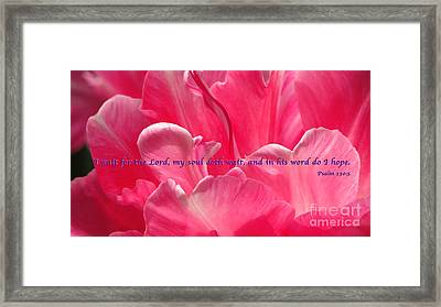 I Wait Framed Print by Terry Wallace