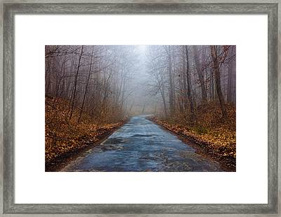 I Walk A Lonely Road Framed Print by Pati Photography