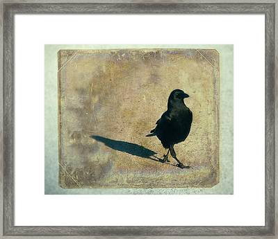 I Walk Alone Framed Print