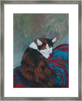 I Want My Lap Framed Print by Gail Daley