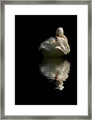 I Want To Be A Beautiful Swan Framed Print