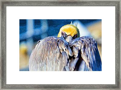 I Want To Be Left Alone Framed Print