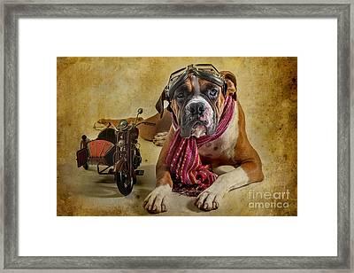 I Want To Ride Framed Print by Domenico Castaldo