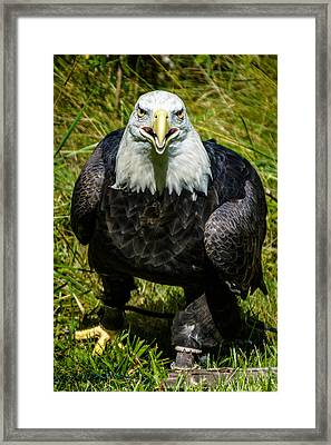 I Want You For The Us Army Framed Print
