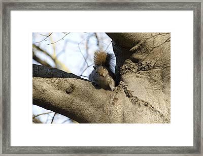 I Was Waiting For You Framed Print by Bianca Ferrando