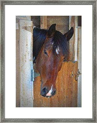 I Was Waiting For You Framed Print by Sandi OReilly