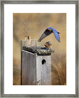 I Will Be Your Shelter Framed Print by Lori Deiter