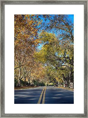 I Will Follow Framed Print by Laurie Search