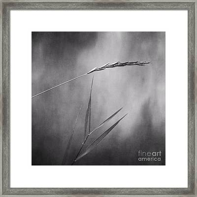 I Will Hold You In Black And White Framed Print