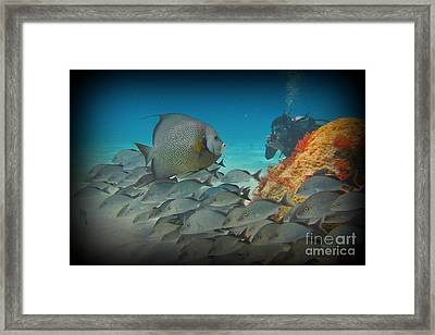I Will Pose Framed Print