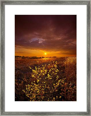 I Will See You Again Framed Print by Phil Koch