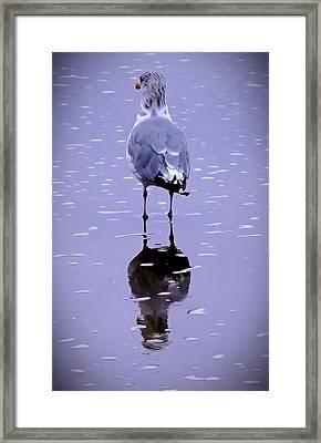 I Will Wait Framed Print by William Walker