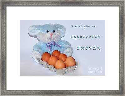 I Wish You An Eggcellent Easter Framed Print