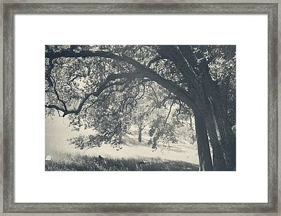 I Would Wrap My Arms Around You Framed Print by Laurie Search