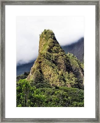 Iao Valley 47 Framed Print by Dawn Eshelman