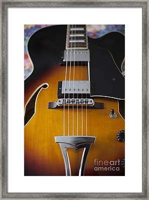 Ibanez Hollow Body Framed Print
