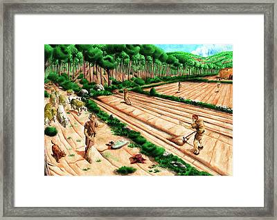 Iberian Agriculture Framed Print
