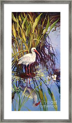 Ibis  Framed Print by Laurie Hein
