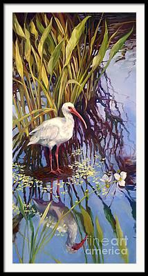 Florida Swamp Reflection Framed Prints