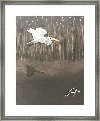 Ibis Over The Marsh Framed Print
