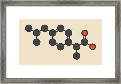 Ibuprofen Inflammation Drug Molecule Framed Print by Molekuul