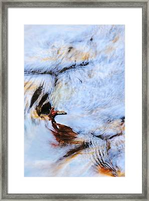 Icarus Framed Print by Elzbieta Weron