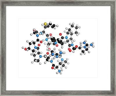 Icatibant Hereditary Angioedema Drug Framed Print