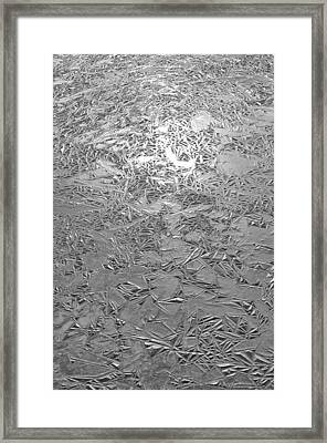 Ice Abstract Framed Print by Brian Mollenkopf