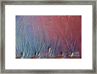 Ice Abstract  Framed Print