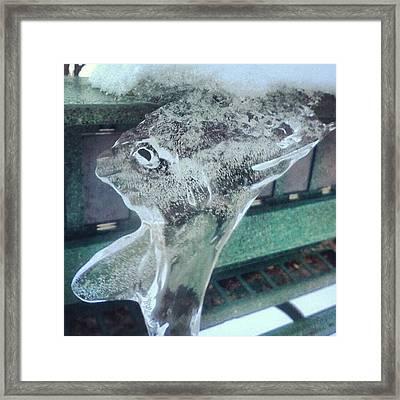 Ice Alien Framed Print