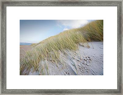 Ice And Frost On The Beach Framed Print by Ashley Cooper