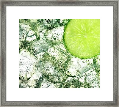 Ice And Lime Framed Print by Anthony Bradshaw
