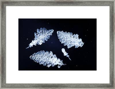 Ice And Snow Crystals Framed Print