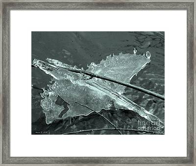 Framed Print featuring the photograph Ice-bird On The River by Nina Silver