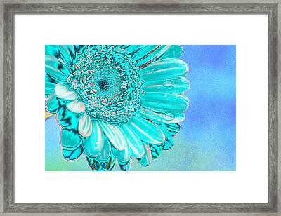 Ice Blue Framed Print by Carol Lynch