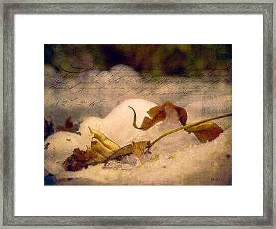 Ice Cap Story Framed Print by Bellesouth Studio