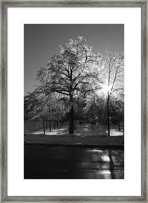 Ice Cold Sun Framed Print by Maude Demers