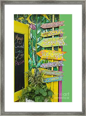 Ice Cream Framed Print by Sheldon Kralstein